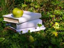 Apple of knowledge. Apple with books in the garden stock image