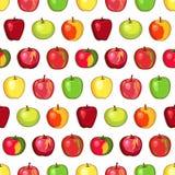 Apple kopieren auf transparentem Hintergrund Lizenzfreie Stockfotos