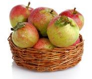 apple kosz Fotografia Stock