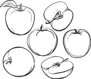 Apple A lápis desenho das maçãs Em um fundo branco Uma cor Ilustração do vetor Imagem de Stock
