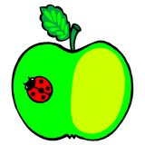 Apple and ladybird Stock Photo