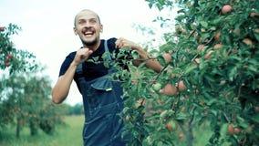 Apple-landbouwer het dansen stock video