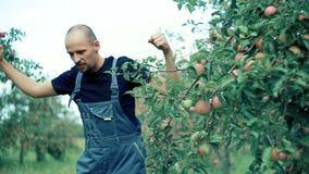 Apple-landbouwer het dansen stock videobeelden