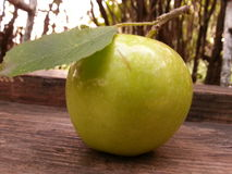 Apple and leaf Royalty Free Stock Image