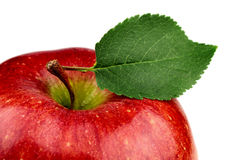 Apple with a leaf close-up Stock Photography