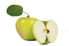 Apple leaf Stock Photography