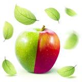 Η πράσινη κόκκινη Apple και leafe απομονωμένος με το ψαλίδισμα της πορείας Στοκ φωτογραφίες με δικαίωμα ελεύθερης χρήσης