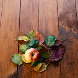Apple with leafs. Royalty Free Stock Photo