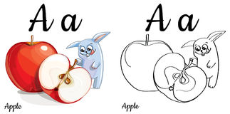 Apple Lettera A, pagina di coloritura di alfabeto di vettore Fotografie Stock Libere da Diritti