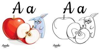 Apple Lettre A, page de coloration d'alphabet de vecteur Photos libres de droits