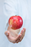 Apple levitates above the hands. In the air on a white background Royalty Free Stock Photography