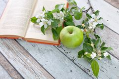 Apple with sprig book Royalty Free Stock Photo