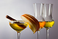 Apple liquor with cinnamon Stock Photography