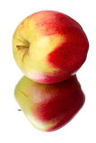 Apple lying on its side Royalty Free Stock Image