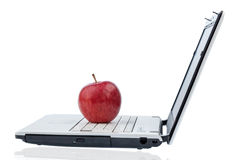 Apple lying on a keyboard Stock Images