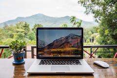 Apple Macbook pro-dator med den magiska mus- och växtvasen på trätabellen royaltyfri foto