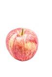 Apple maduro Fotografía de archivo libre de regalías