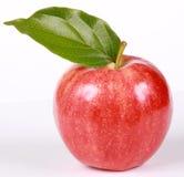 Apple maduro rojo con la hoja Fotos de archivo libres de regalías