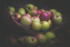 Apple, mand, het bloeien, heerlijke samenstelling, donker, voedsel, groen fruit, zure aard, organisch, rood, stilleven, de zomer, Stock Afbeeldingen