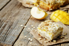 Apple mango cream cheese oat bars Royalty Free Stock Photography