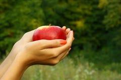 Apple in mani della donna Immagini Stock Libere da Diritti