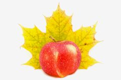 Apple&Maple. Picture of a red apple and green/yellow maple leaf Royalty Free Stock Photos