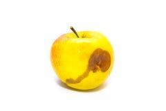 Apple marcio isolato su fondo bianco Immagini Stock