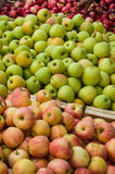 Apple in a market in Provence. France Stock Image