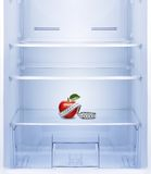 Apple with measurement  in empty refrigerator. Stock Photos