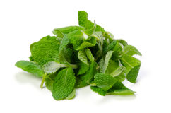 Apple mint Stock Photo