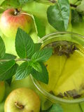 Apple mint jelly Stock Images