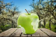 Apple. Missing bite  core image sequence granny smith  green continuity Royalty Free Stock Photos