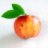 Apple mit grünen Blättern Lizenzfreie Stockbilder