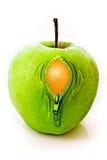 Apple mit Reißverschluss Stockfotografie