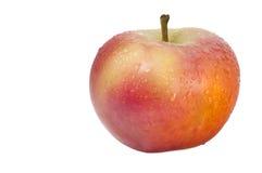 Apple mit Wassertropfen Stockbilder