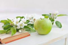Apple mit Zweig buchen Lizenzfreies Stockbild