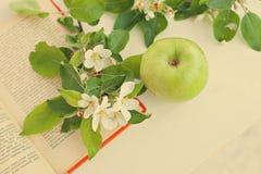 Apple mit Zweig buchen Lizenzfreies Stockfoto