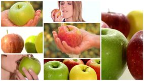 Apple montage including fruits and healthy young women Stock Images