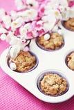 Apple muffin royaltyfri foto