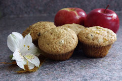 Apple muffins Stock Photos