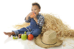 Apple-Munching Farm Boy Stock Image