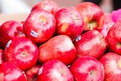 Apple na loja local Imagens de Stock