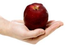 Apple na mão Fotos de Stock