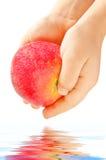 Apple nas mãos imagem de stock