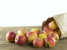 Apple of natural light. On wood background Stock Photos