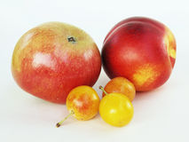 Apple, nectarine and mirabelles Stock Photo