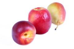 Apple, nectorine und Birne Lizenzfreie Stockfotos