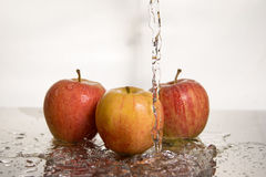 Apple nell'acqua Immagini Stock Libere da Diritti