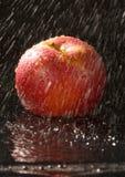 Apple nella pioggia fotografie stock libere da diritti