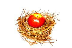 Apple on the nest Royalty Free Stock Photos